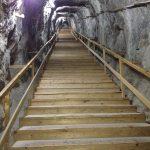 salina praid scari
